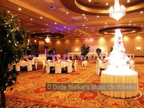 Elegant Wedding Decorations Pictures : Wedding dj dude walker