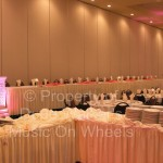 LED Up-Lighting on Columns | Dude Walker Wedding DJs of Fargo, ND (dudewalker.org) 701-234-9492