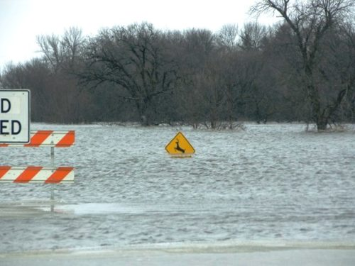 Flood 2009 | Deer Crossing